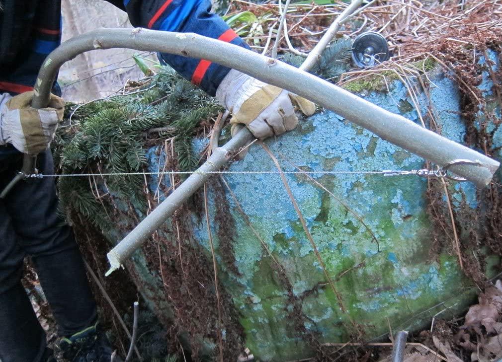 Scie fil sur branche